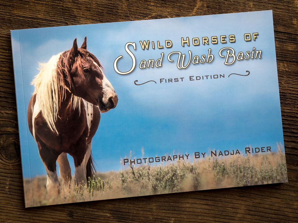 Wild Horses of Sand Wash Basin Photography Book